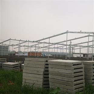 Pig house steel construction site